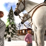 Taelor talking to the horses