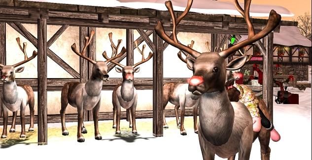 Taelor climbed Rudolph and hugged him