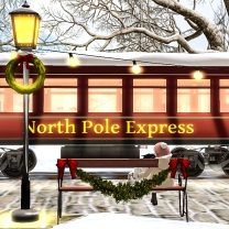 Exploring the North Pole