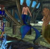 Swimming with mermaids
