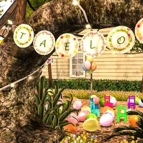Taelor's Birthday Setting_074