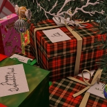 Christmas Tree_015