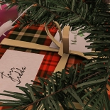 Christmas Tree_032
