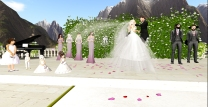 Adam's wedding_045
